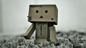 danbo wonders by ravindrakumar