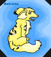 Hey i have changed colour by Balsamo