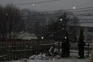 First Snow of the Year by fractalfiend