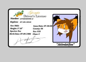 Driver's License by Atimist