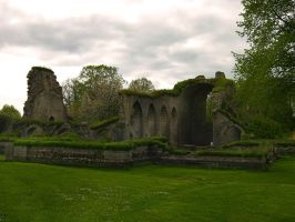 The Ruins of Alvastra Abbey II by Photopathica