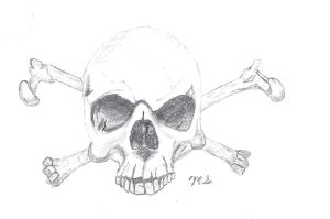 Skull and Crossbones by Mikey-Spillers