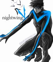 Nightwing by renkarts