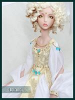 Liselotte - wip dress by Lelahel-Clothes
