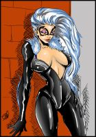 Black Cat Digital Colors by IanDWalker