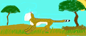 Cheetah Attempt updated by NutellaNinja