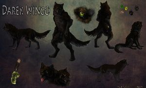 Darek Wingo Character Reference Sheet by UglyDucklingCustoms