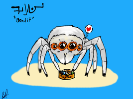 Bandit the Giant Spider by Bloodshadewolves