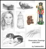 Observation Drawings 2 by CelebrenIthil