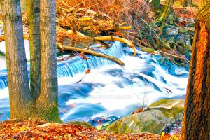 Waterfall HDR by Anndi