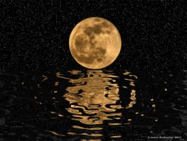 Moon Reflection by jim88bro