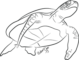 Sea Turtle Lineart by Britannia-Orca