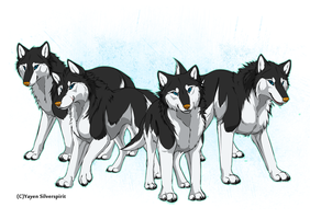 the Penguins of Madagascar as wolves (orange nose) by Silver-spirit666