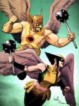 Hawkman and Hawkgirl by ReillyBrown
