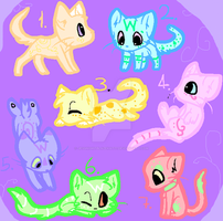 Kitten  auction over   Leftover kits on sale. by JessNightBlazeKat77