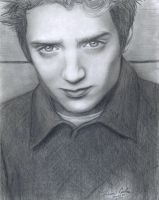 Elijah Wood IV by LatinPrincess17
