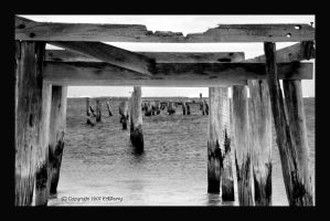Old Jetty B and W by AdamsWife