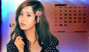SNSD Calendar : January 2012 by GraPHriX