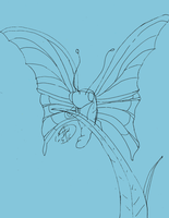 butterfly 1_7_11 LINES by bengjie