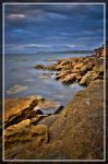 Rockpool by andyjimmy