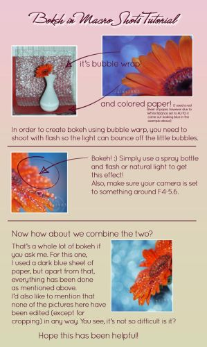 Bokeh in Macro Shots Tutorial by Jules1983