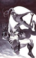 Spidey VS Wolvie by ChristopherStevens