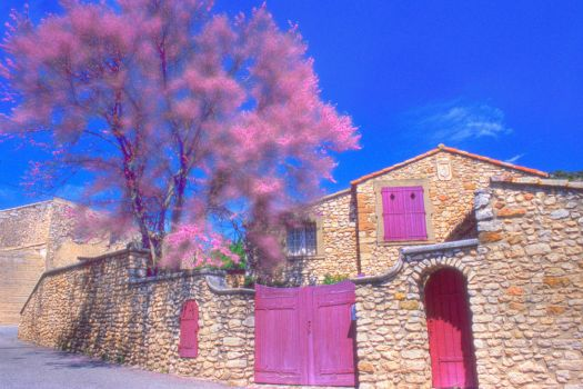 Provence in Pink by houselightgallery