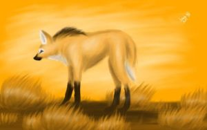 Maned Wolf at Dusk by TheWerewolfPuppy