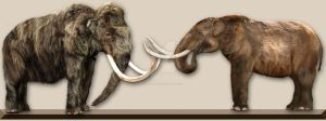 Mammoth vs Mastodon by Dantheman9758