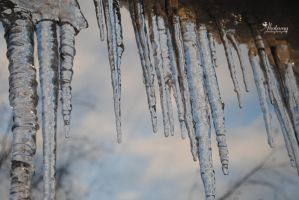 Icicles. by Akatamy