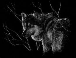 Untitled (Wolf with Trees) by Zurelle