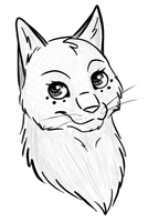 Request - Snowstorm-cat by xXAkilaXx