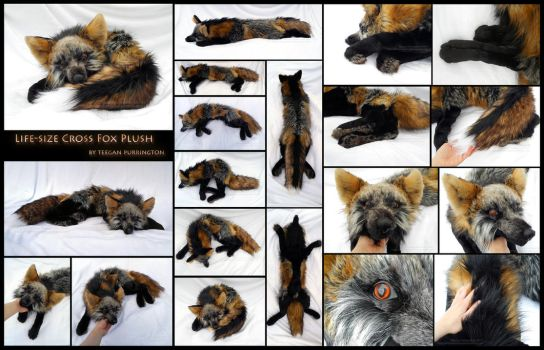 Cross Fox: Life-Size Floppy Plush Detail (Compact) by TeeganPurrington