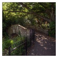 Golders Hill Park by Isyala