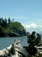 Lighthouses and Driftwood by ZanderJames