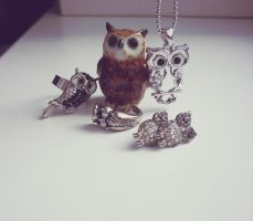 owl collection by Lemonshortcake