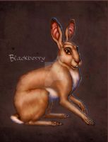 Blackberry by SapphireGamgee
