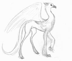 Simi The Hippogryph by Sky-Lily