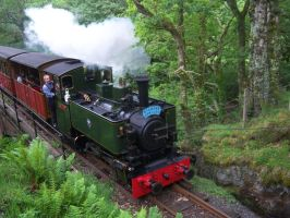 Tom Rolt On Dolgoch Viaduct by rh281285