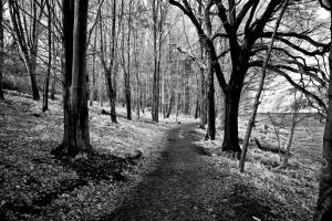 A Cold and Lonely Path by Liam-diamond