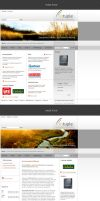 Software Company Website by pulsetemple
