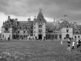 The Biltmore by Dumbblond-Bunny
