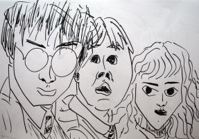 Harry, Ron and Hermione caricatures by MauricioKanno