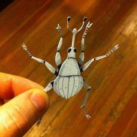 Papercut Bugs! by stuntkid