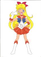 Parallel Sailor Venus by animequeen20012003