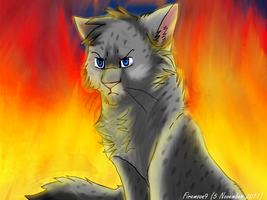 Ashfur by FireMoon9
