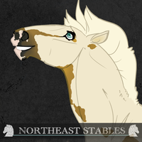 4936 ES Tea and Biscuits by NorthEast-Stables