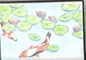 Koi Pond - In Color by Wolffie12