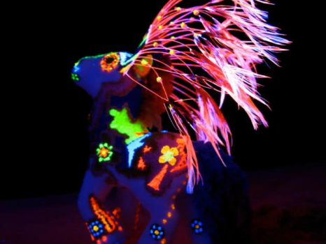 El Rey del Sol - Black Light Custom Pony by KarRedRoses