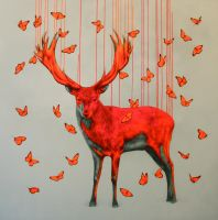 Wild Spirit by LouiseMcNaught